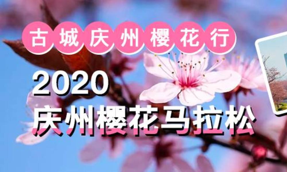 第29届庆州樱花马拉松(跑团邦)