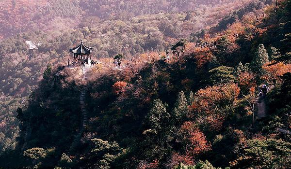 北京2015第十二届香山登山赛