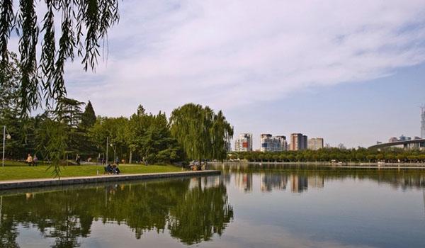 2015上海世纪公园趣味跑