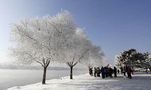 感受雪的世界!雾凇岛-长白山-魔界