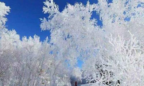 雪走百丈岭活动
