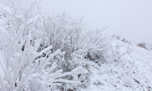 临安太子尖雪地穿越活动