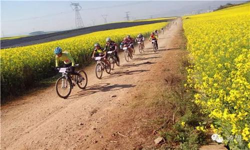 2016年云南·罗平 花海山地自行车节