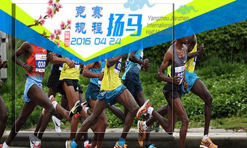 2016扬州鉴真国际半程马拉松赛