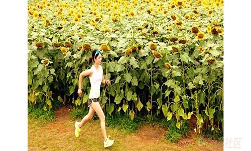 十二金钗大观园万人花海田园趣味跑